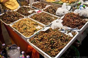 Insectes grillés marché Bangkok Thailande