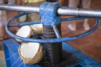 Manufacture noix coco Vietnam