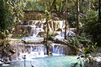Chutes d'eau de Tat Kuang Si, Laos