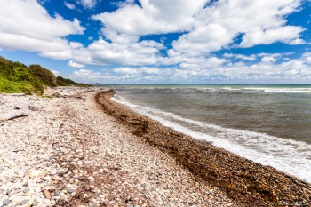 Lilico Beach, Tasmanie