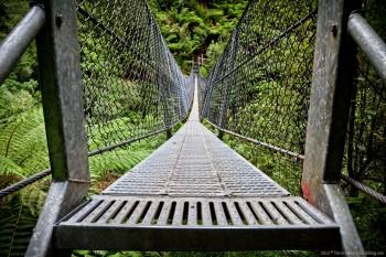 Pont suspendu, Montezuma Falls