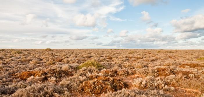 Nullarbor Plain