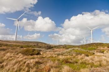 Les éoliennes de Cape Bridgewater