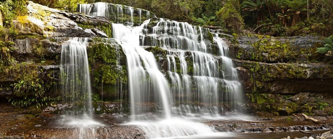 Panoramique Liffey falls, Tasmanie, Australie