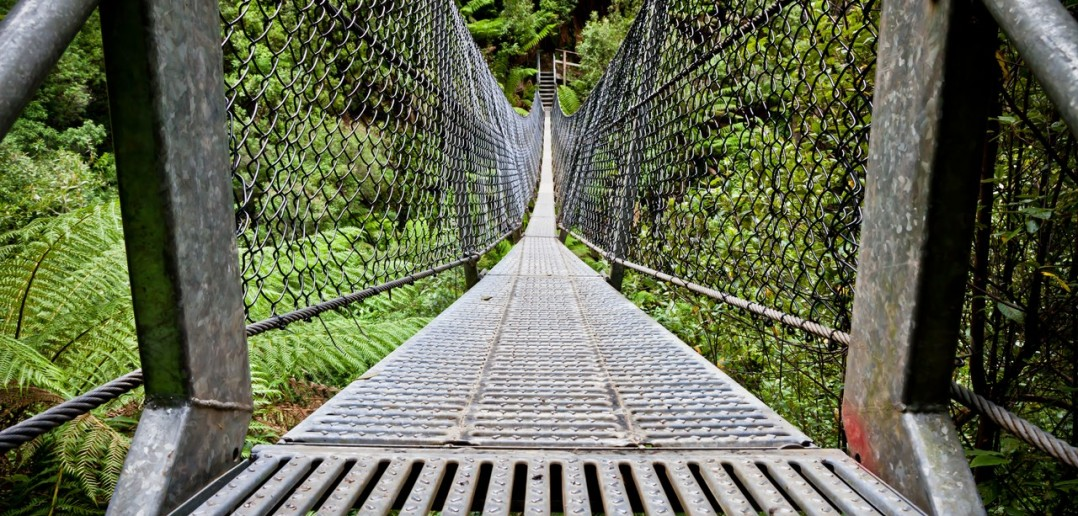 Pont suspendu Montezuma falls Tasmanie Australie