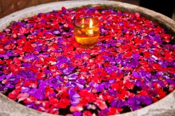 Mare fleurs Ubud Bali Indonesie