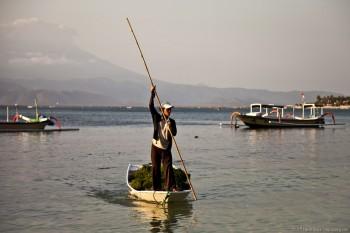 Pecheur algue traditionel Nusa Lembongan Bali Indonesie