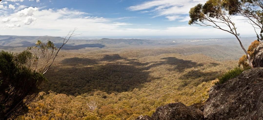 Panoramique de Pigeon House Mountain, Australie