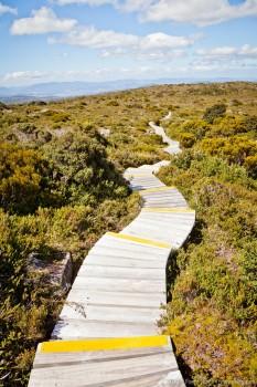 Chemin de randonnée, Hartz National Park