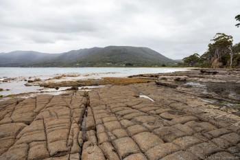Tessellated pavements, Péninsule tasmane