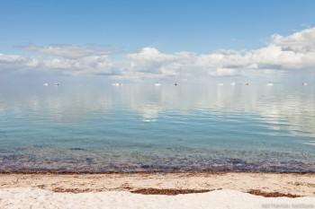 La plage de Denham