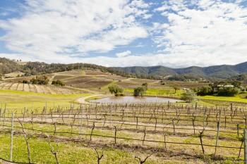 Les vignobles de la Lower Hunter Valley