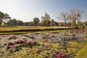 Sukothai temples lotus thailande