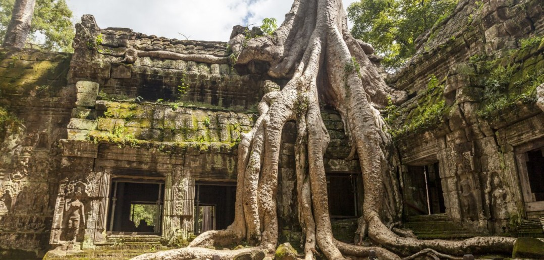 Temple Ta Prohm Angkor Cambodge