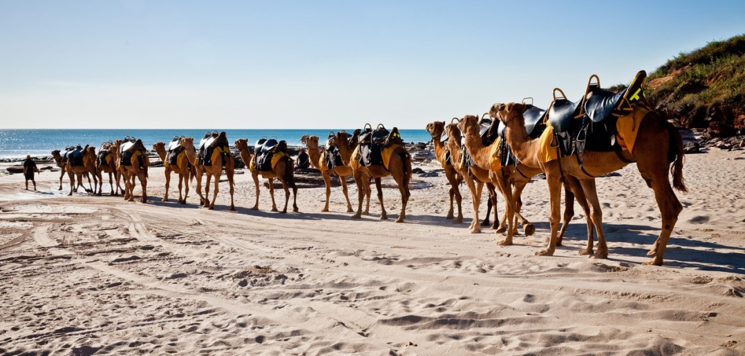Cable Beach Broome WA Australie